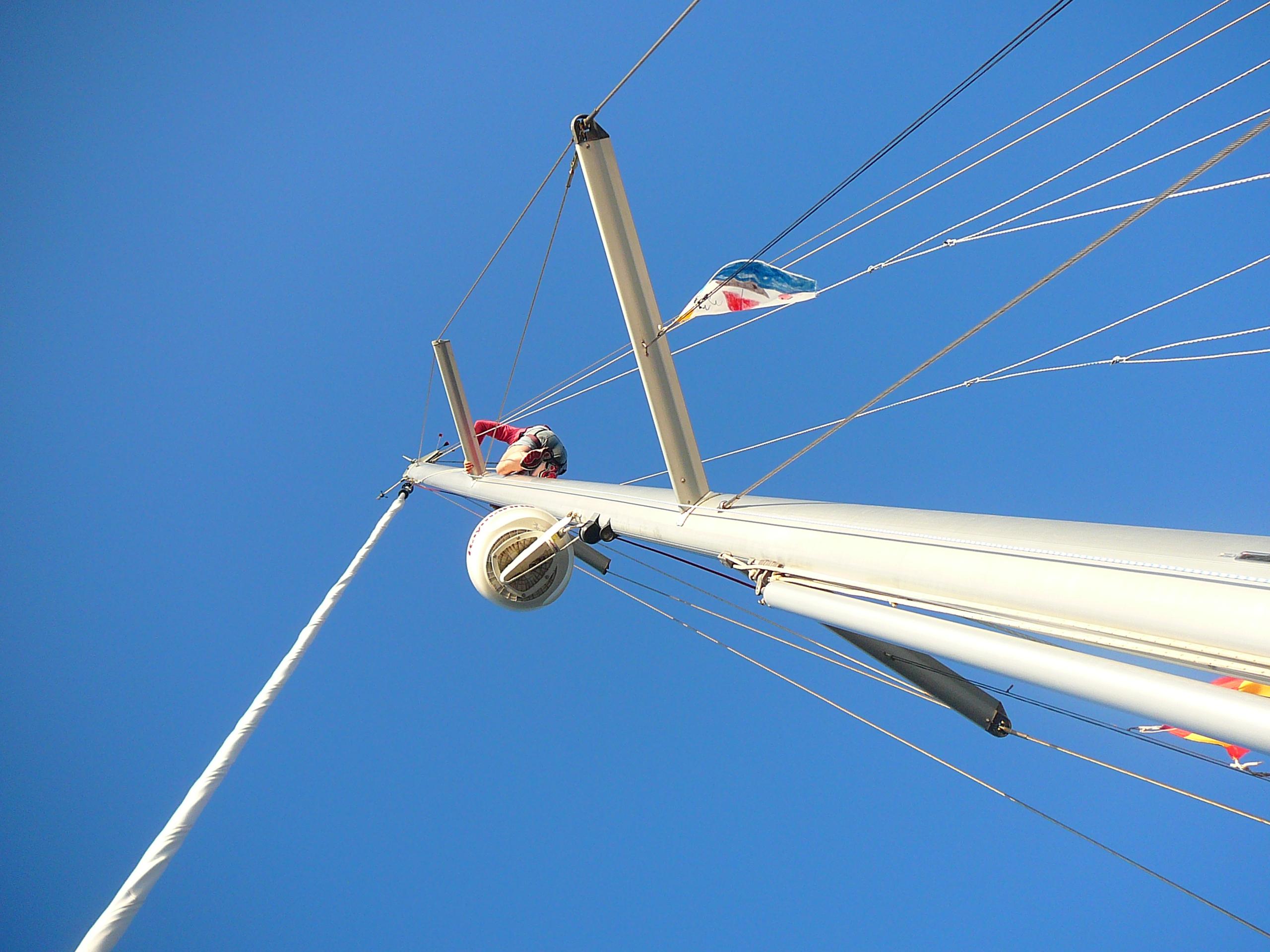 Klettergurt Für Mast : Treeup klettergurt pb baumkletterer sicherungsgurt handwerker