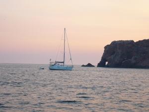 SY sMILES Ilha